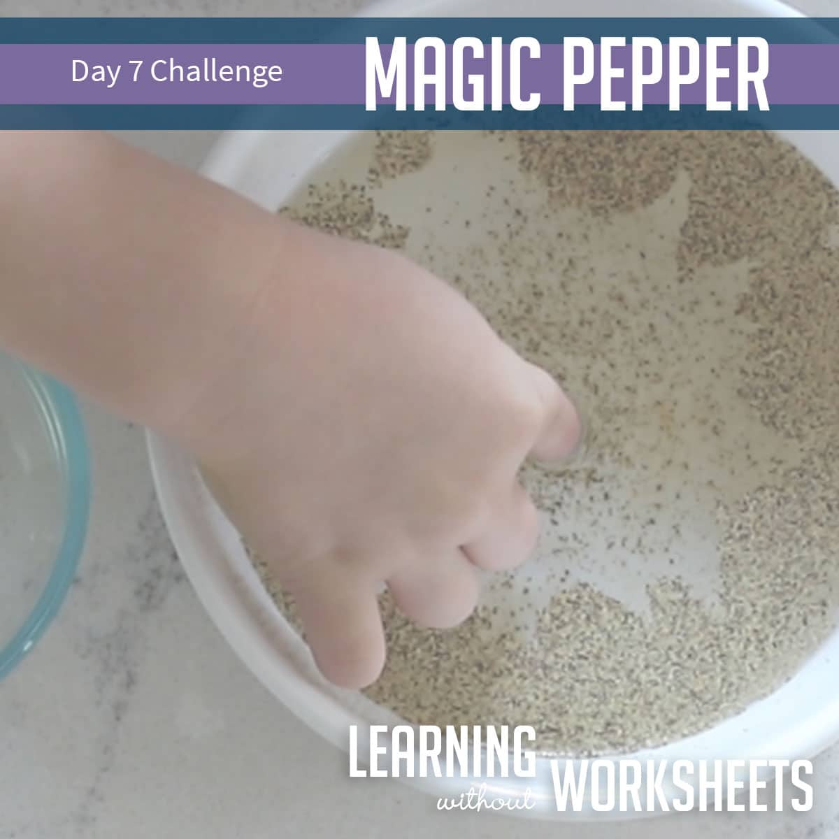 Learning Without Worksheets: Day 7!